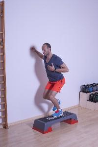 Muskeln der Streckerkette - Variante a