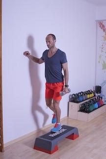 Muskeln der Streckerkette - Variante b